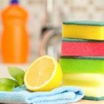 Eco neteja al teu pis de lloguer